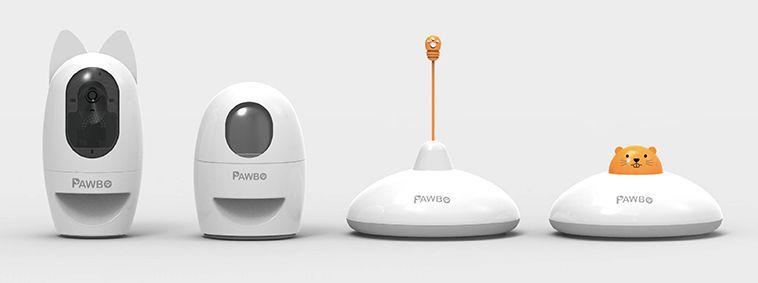 Pawbo